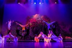 qing-dynastie-balletstudiofree-17