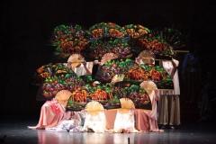 qing-dynastie-balletstudiofree-43