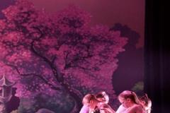 qing-dynastie-balletstudiofree-44