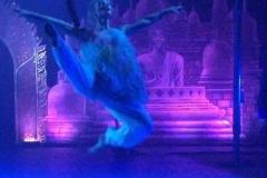 speciale-momenten-balletstudiofree-02
