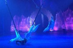 speciale-momenten-balletstudiofree-03