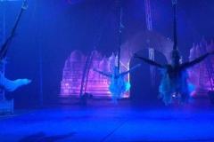 speciale-momenten-balletstudiofree-04